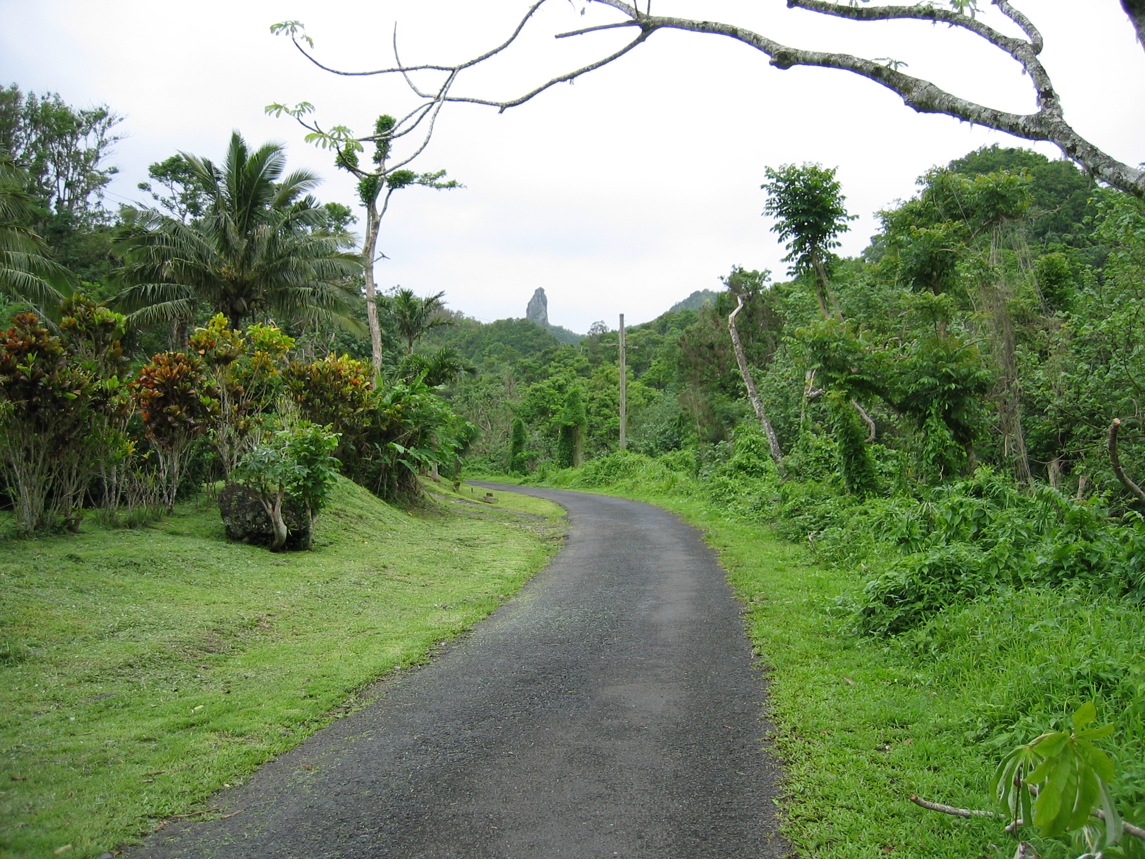 A road in Rarotonga, the Cook Islands.